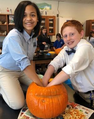 MS pumpkins